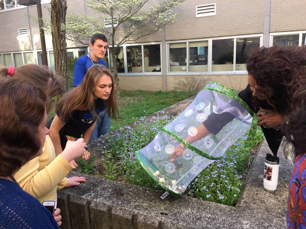 The WHS Aspire Class Releases Butterflies